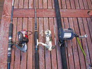 Offshore Kayak Fishing Rods